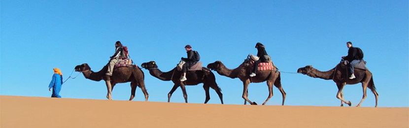 act-camel-riding-morocco
