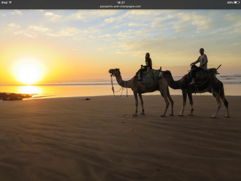 Sunset camel rides