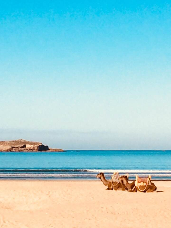 Boxing day a la Essaouira