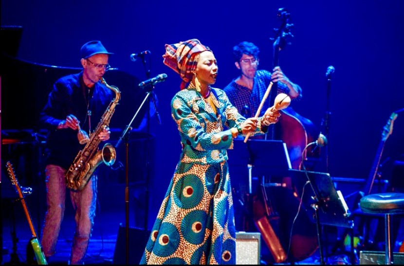 Malian singer-songwriter Fatoumata Diawara